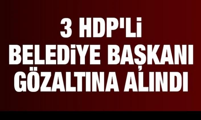 Van'da HDP'li Belediye Başkanlarına Gözaltı