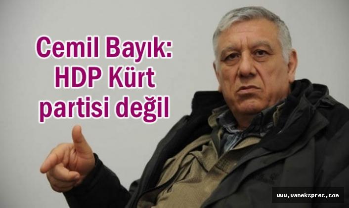 Bayık: HDP Kürt partisi değil