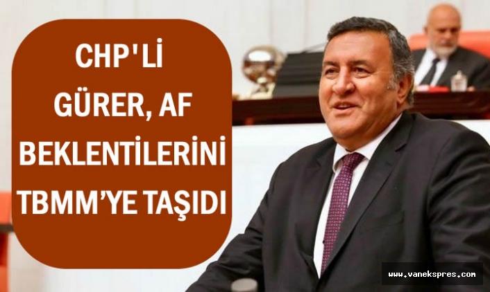 CHP'li Gürer, Af Beklentilerini TBMM'ye taşıdı