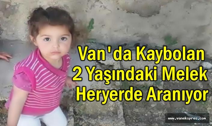 2 Yaşındaki Melek Van'da Kayboldu ve Heryerde Aranıyor