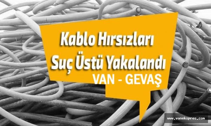 Van'da Kablo hırsızları suçüstü yakalandı 4 Gözaltı