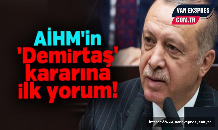 AİHM'in Demirtaş Kararına Erdoğan'dan İlk Açıklama