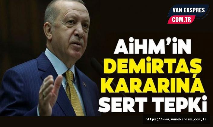 Erdoğan: AİHM, mahkemelerimizin yerine karar veremez