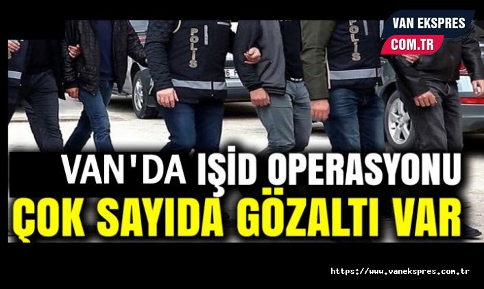 Van'da IŞİD operasyonu: çok sayıda gözaltı