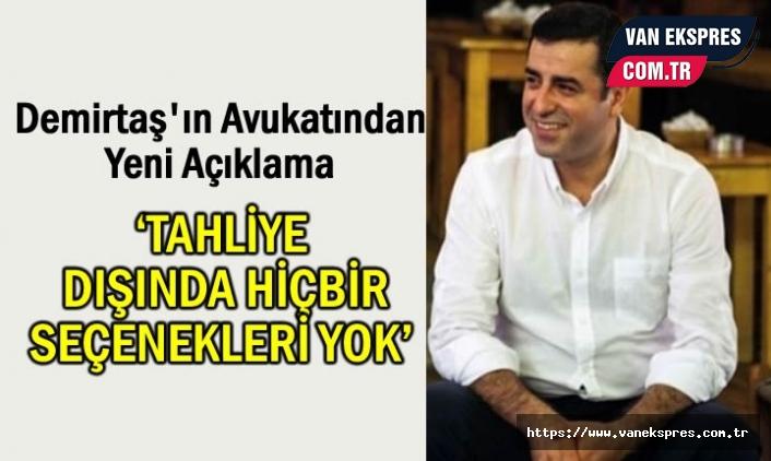 Demirtaş'ın avukatı Demir: Başka seçenek kalmadı!
