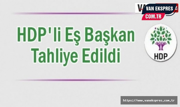 HDP'li Eş Başkan Karaman tahliye edildi