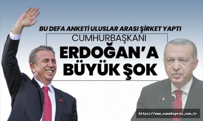 Uluslararası anket firmasından çarpıcı Türkiye anketi