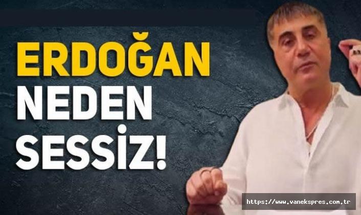 Peker'in videolarına Erdoğan neden sessiz? Portakal 3 ihtimali sıraladı