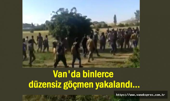 Van'da binlerce düzensiz göçmen yakalandı