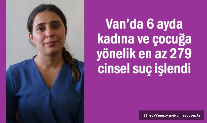 Van'da 6 ayda kadına ve çocuğa karşı 279 cinsel suç işlendi