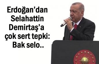 Erdoğan'dan Demirtaş'a sert tepki: Bak selo..