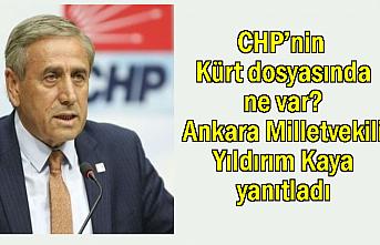 CHP'nin Kürt dosyasında neler var?