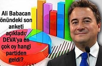 DEVA'ya en çok oy hangi partiden oy gelecek? İşte o anket