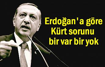 Erdoğan'a göre Kürt sorunu var mı yok mu?