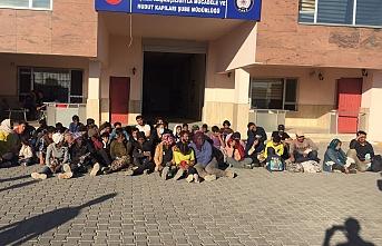 Van'da 299 Göçmen Yakalandı 15 Organizatöre Gözaltı