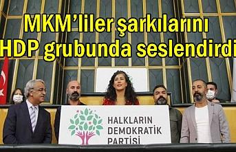 MKM'li Kürt sanatçılar HDP grubunda seslendi