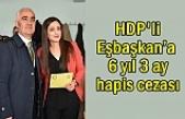 Van'da Yargılanan Eşbaşkana 6 yıl 3 ay hapis cezası