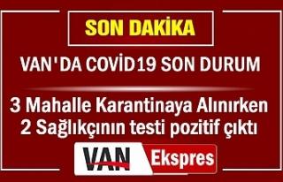 Van'da Covid19 Son Durum