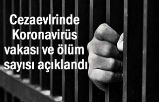 Cezaevlerinde Korona vaka ve ölüm sayısı