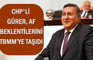 CHP'li Gürer, Af Beklentilerini TBMM'ye...