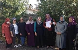 AKP'de Erciş'ten sonra bir istifa haberi...