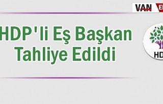 HDP'li Eş Başkan dahil 8 kişi tahliye edildi