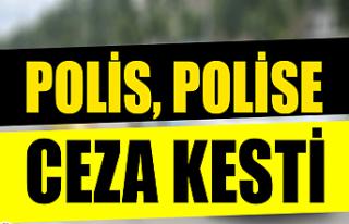 Polis, polise ceza kesti: İşte nedeni