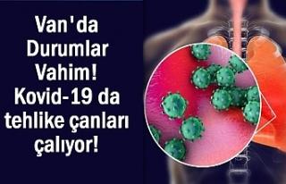 Van'da Koronavirüs sayısındaki artışı ürkütüyor