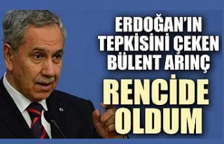 Bülent Arınç: Erdoğan Ağır Konuştu Rencide...