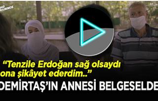 Demirtaş'ın annesi: Tenzile Hanım hayatta olsaydı...