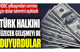HSBC 2021 Dolar tahminini açıkladı: Türk halkını...
