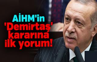 AİHM'in Demirtaş Kararına Erdoğan'dan...