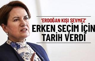 İyi Parti Lideri Akşener, 'erken seçim' için...