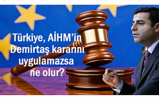 Türkiye, AİHM'in Demirtaş kararını uygulamazsa...