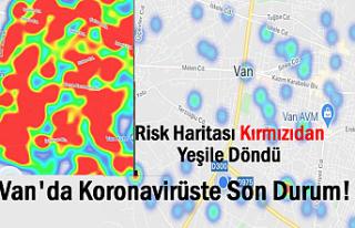 Van'da koronavirüs salgınında son durum