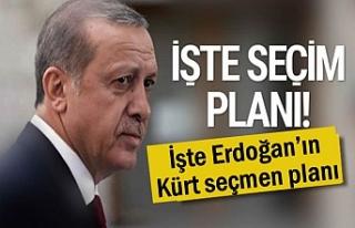 İşte Erdoğan'ın Kürt seçmen planı