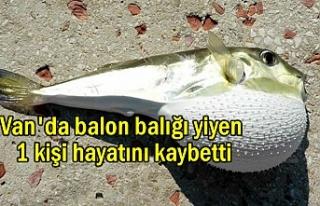 Van'da Balon Balığı Can Aldı İddiası