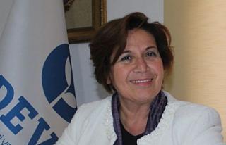 Van Deva: Kapıköy İvedi Şekilde Açılmalı