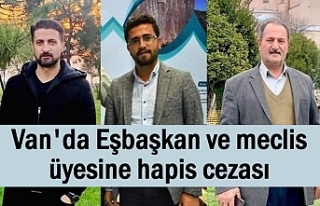 Erciş Belediye Eşbaşkanı ve meclis üyesine hapis...