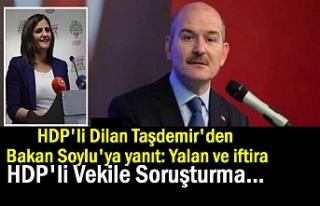 HDP'li Dilan Taşdemir'den Bakan Soylu'ya...