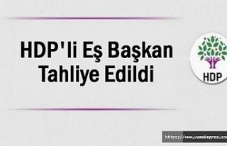 HDP'li Eşbaşkan tahliye edildi