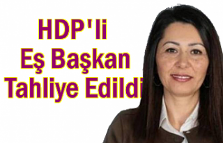 HDP Belediye Eş Başkanı tahliye edildi