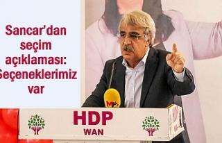 HDP'li Sancar'dan seçim çıkışı: Seçeneklerimiz...