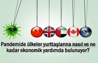 Salgında Hangi Ülke Yurttaşlarına Ne Kadar Yardım...