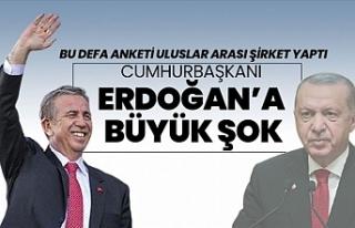 Uluslararası anket firmasından çarpıcı Türkiye...