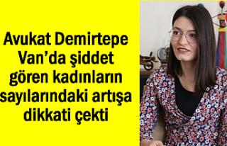 Demirtepe: Van'da şiddet gören kadınların sayıları...