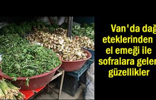 Van'da Şifalı Otlar Tezgahlardaki Yerini Aldı