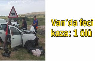 Van'dafeci kaza: 1 ölü, 1 yaralı