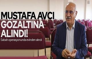 Van Büyükşehir Belediyesi Eşbaşkanı gözaltına...