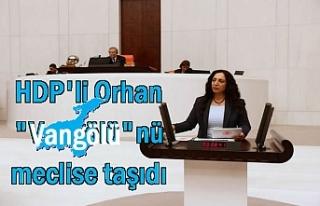 "HDP'li Orhan ""Vangölü""nü meclise..."
